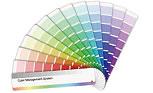 多彩で洗練されたデザインと配色